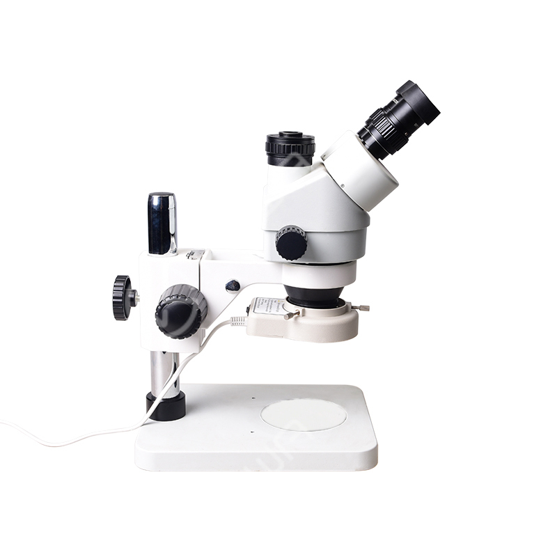 Digital Trinocular Microscope with LED Lamp